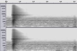 reverb-pomona-blaisdell-bathroom-spectogram