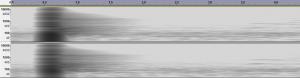 reverb-HMC-Shanahan-courtyard-spectrogram